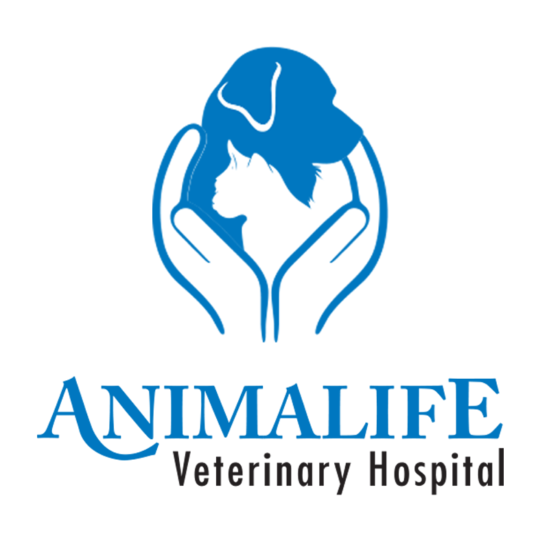 Animalife Veterinary Hospital