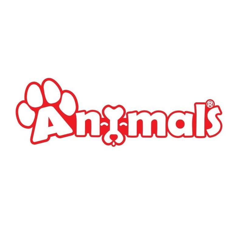 Animals - Nasr City