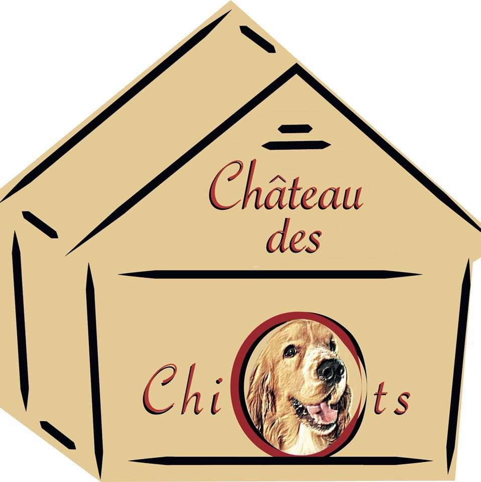 Château des Chiots - Castle of the Puppies