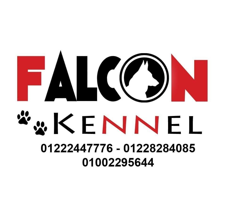 Falcon Kennel