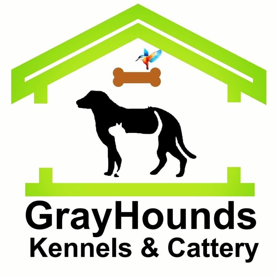 Grayhounds Kennels and Cattery