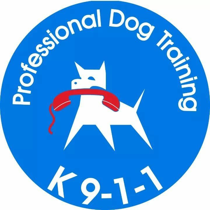 K911 Professional Dog Training