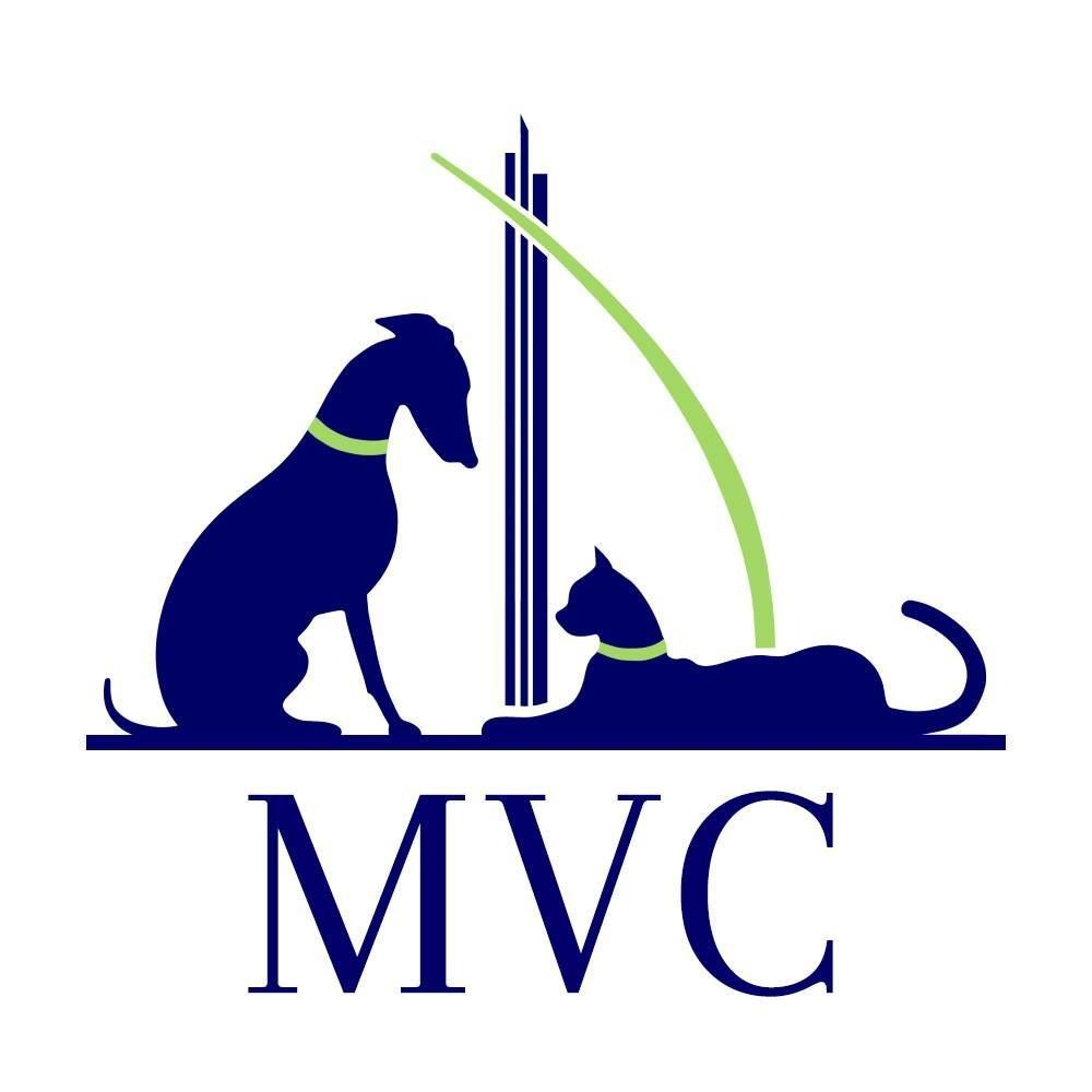 Modern Veterinary Clinic - Al Wasl