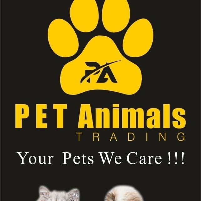 Pet Animals Trading
