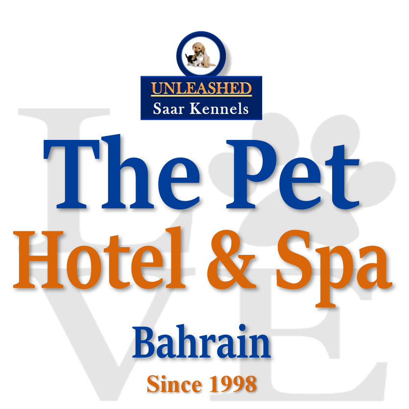 Saar Kennels Pet Hotel & Spa