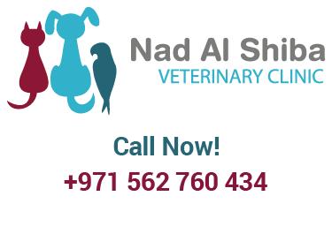 Nad Al Shiba Veterinary Clinic